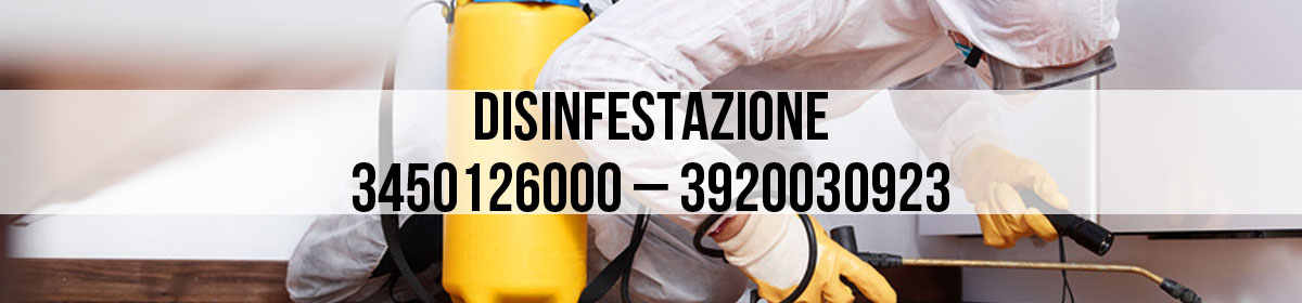 Disinfestazioni e Derattizzazioni in tutta la Toscana